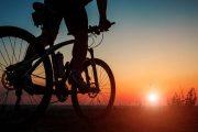 ممنوعیت دوچرخه سواری و پیاده روی در بلوار ورودی شهر راور از سمت کرمان