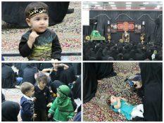 گزارش تصویری(۱)/همایش شیرخوارگان حسینی در راور (٢۵ عکس)