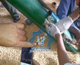 بالابر آسیاب مرغداری در روستای گوهجر راور، دست پسر بچه ۱۰ساله را چرخ کرد+تصاویر