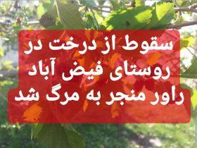 سقوط یک نفر از درخت در روستای فیض آباد راور، منجر به مرگ او شد