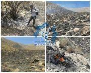 آتش گرفتن بیش از ۱۵ هکتار از مراتع بخش کوهساران راور