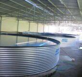 آغاز عملیات ساخت مجتمع پیشرفته پرورش آبزیان گرمابی در راور